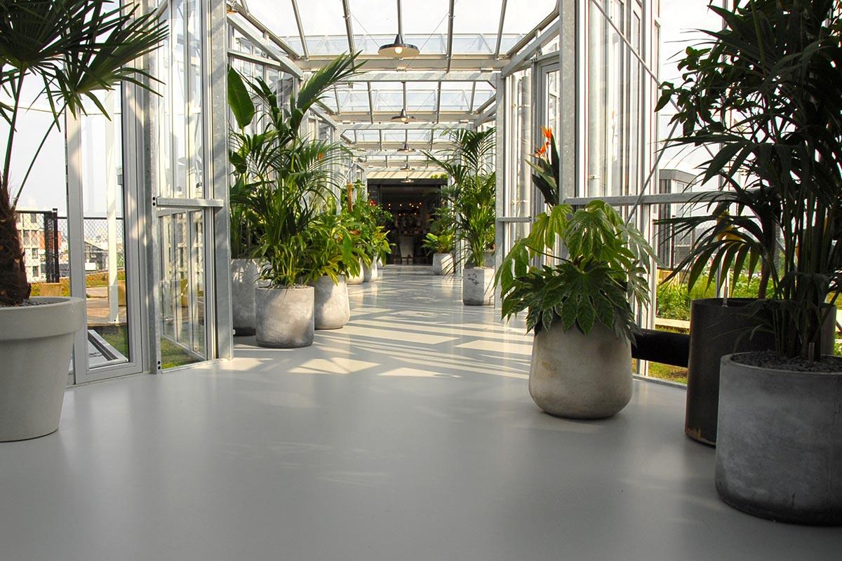 Zoku Amsterdam Dakpark Daktuin Groendak Dakdokters