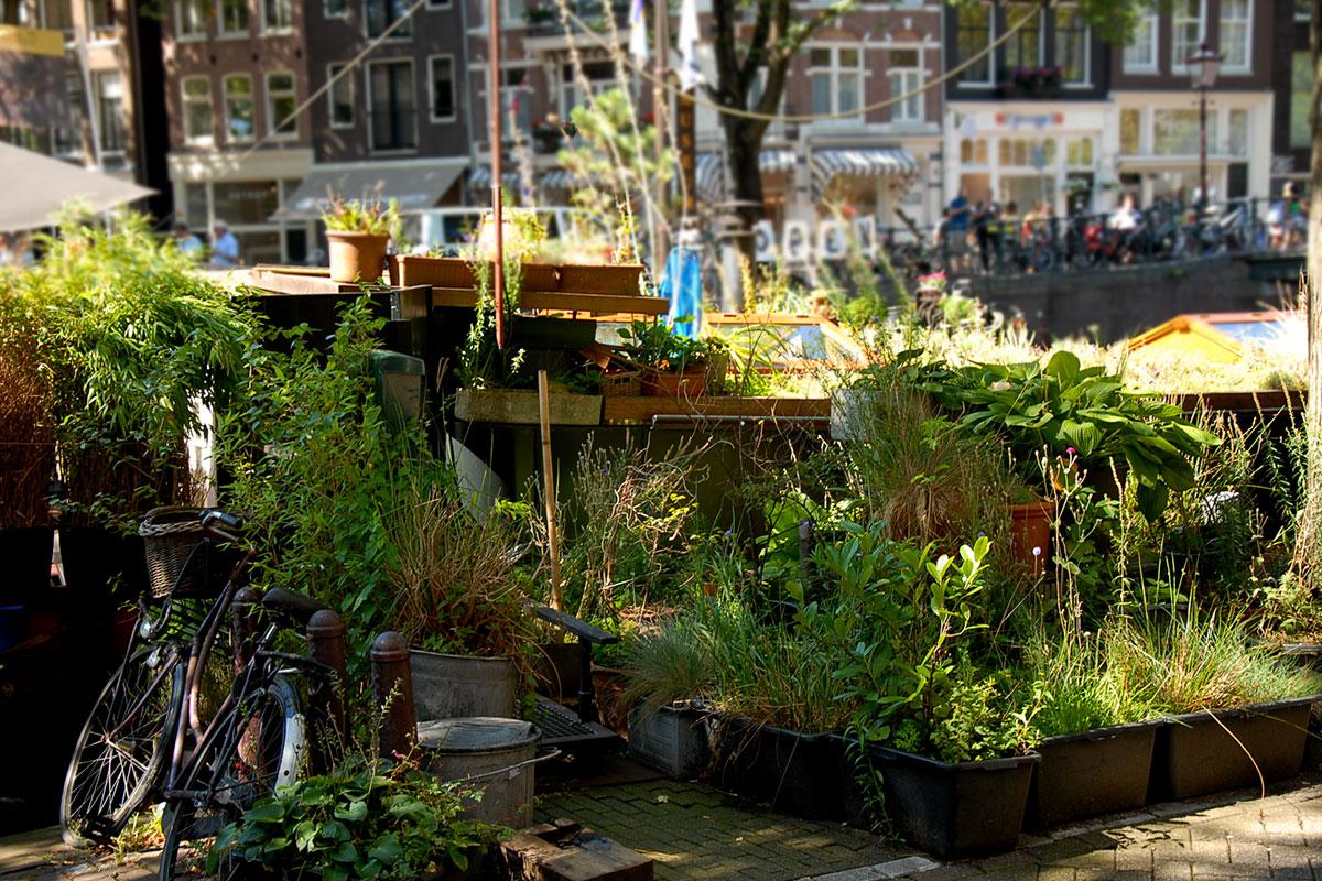 Dakdokters Groendak Woonboot Amsterdam