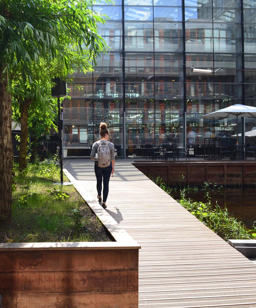 Dakdokters Amsterdam - Groendak Daktuin Dakterras - WTC Den Haag