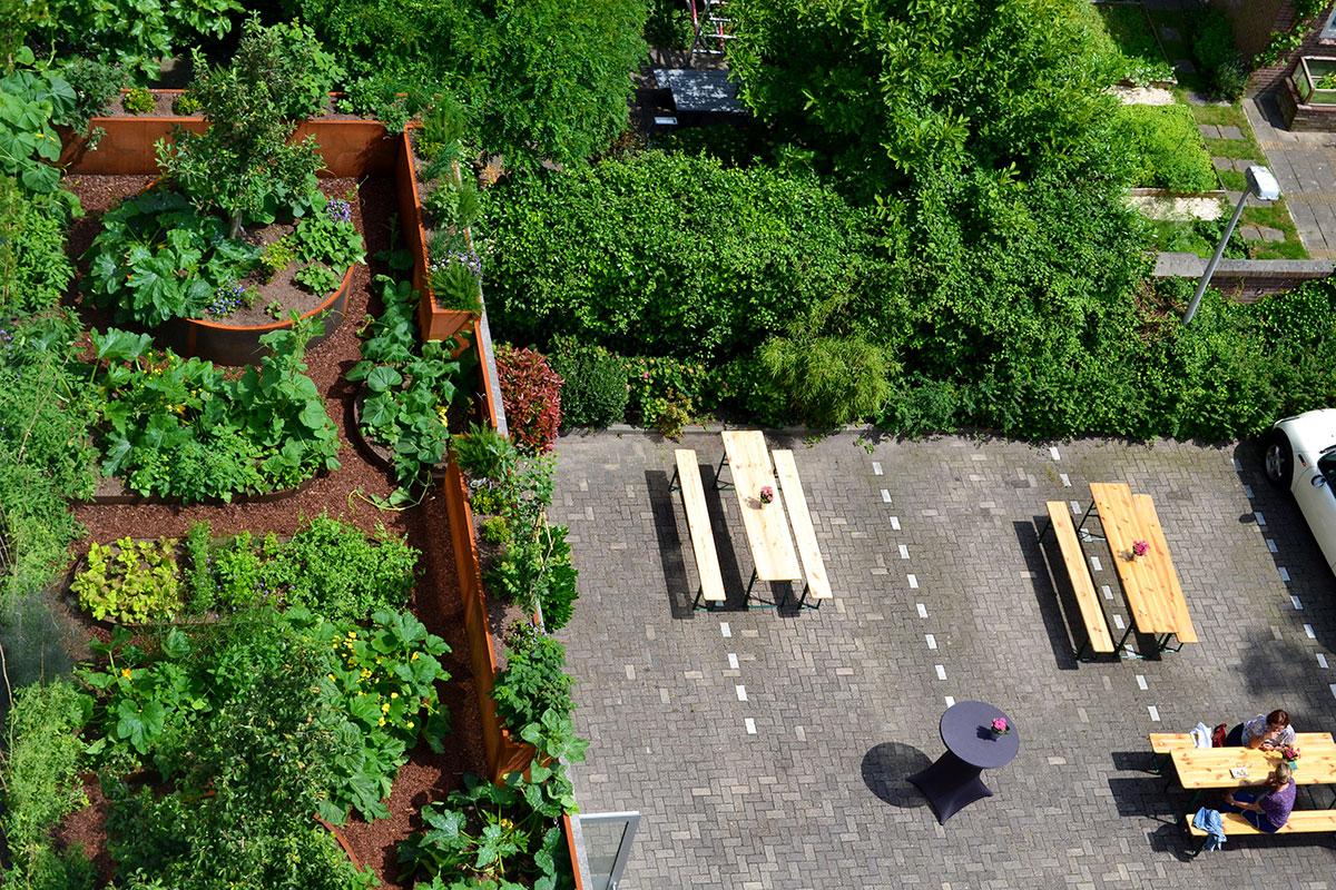 Dakdokters Dakpark Daktuin Court Garden
