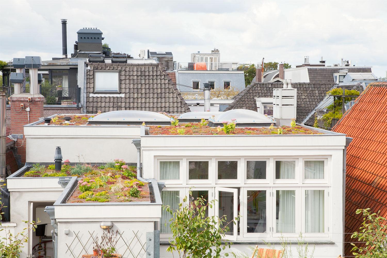 Dakdokters Amsterdam - Groendak Daktuin Dakterras - Daktuin Centrum
