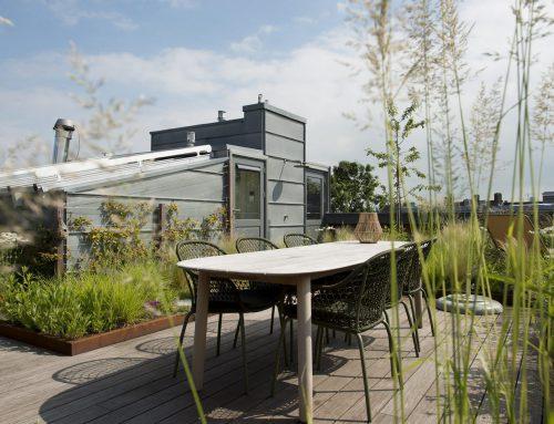 Roof garden Museumkwartier